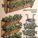 Вертикальное выращивание земляники